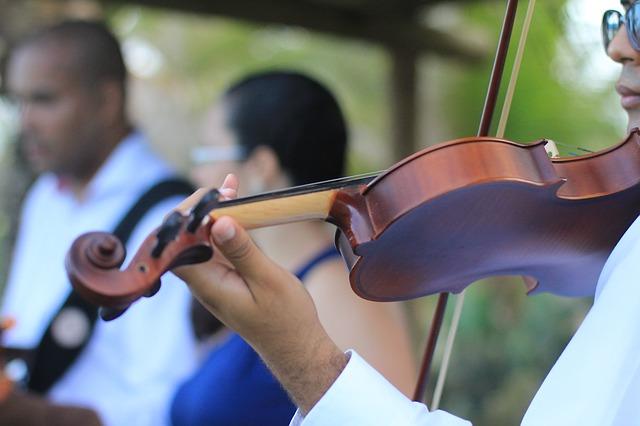 Wedding String Trios and Quartets